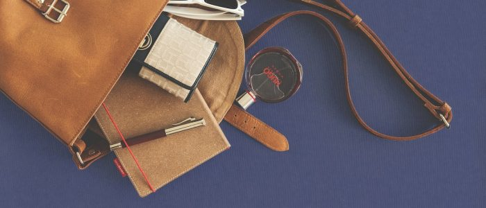 bag, leather goods, accessories